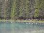Cortina-Dobbiaco